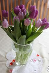 cautiousmum tulips